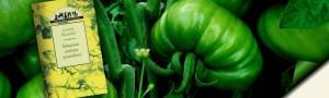 Recenzja książki Smażone zielone pomidory Fannie Flagg
