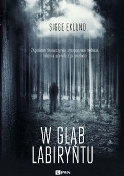 Recenzja książki W głąb labiryntu