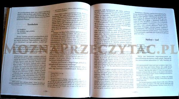 Lapidarium christianum - książka