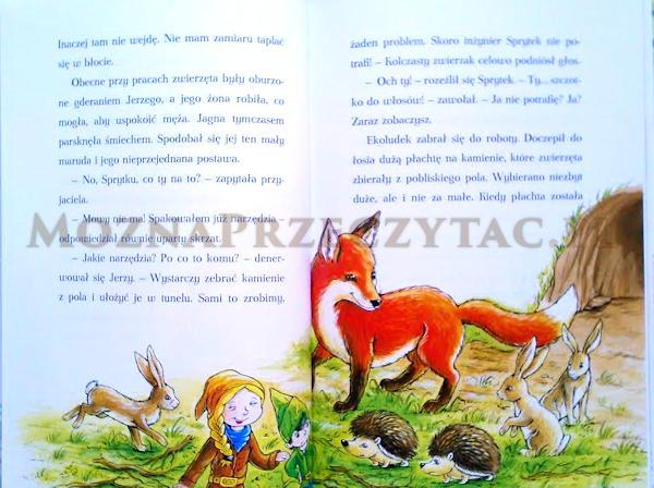 Leśne skrzaty ratują przyjaciół - książka