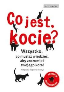 Recenzja książki Co jest, kocie? - Małgorzata Biegańska-Hendryk