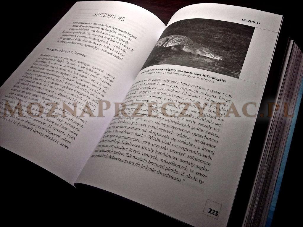 Tsunami historii. Jak żywioły przyrody wpływały na dzieje świata - Maciej Rosalak