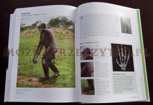 Historia Ewolucji - Steve Parker