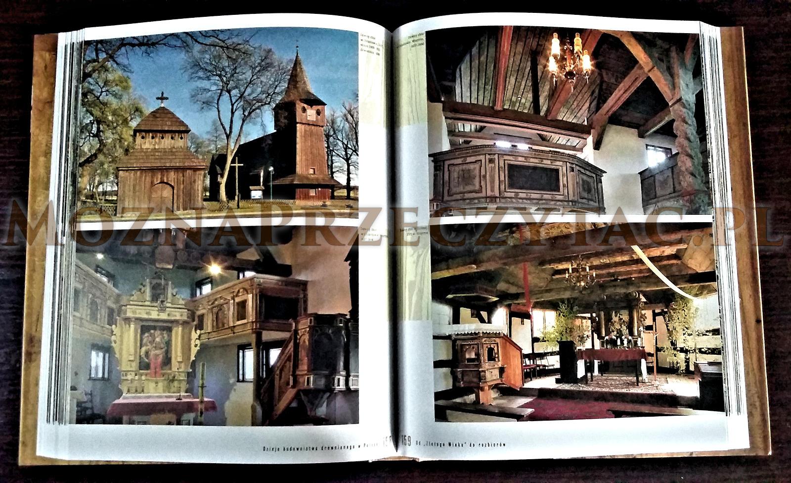 Drewno i architektura. Dzieje budownictwa drewnianego w Polsce - Grażyna Ruszczyk