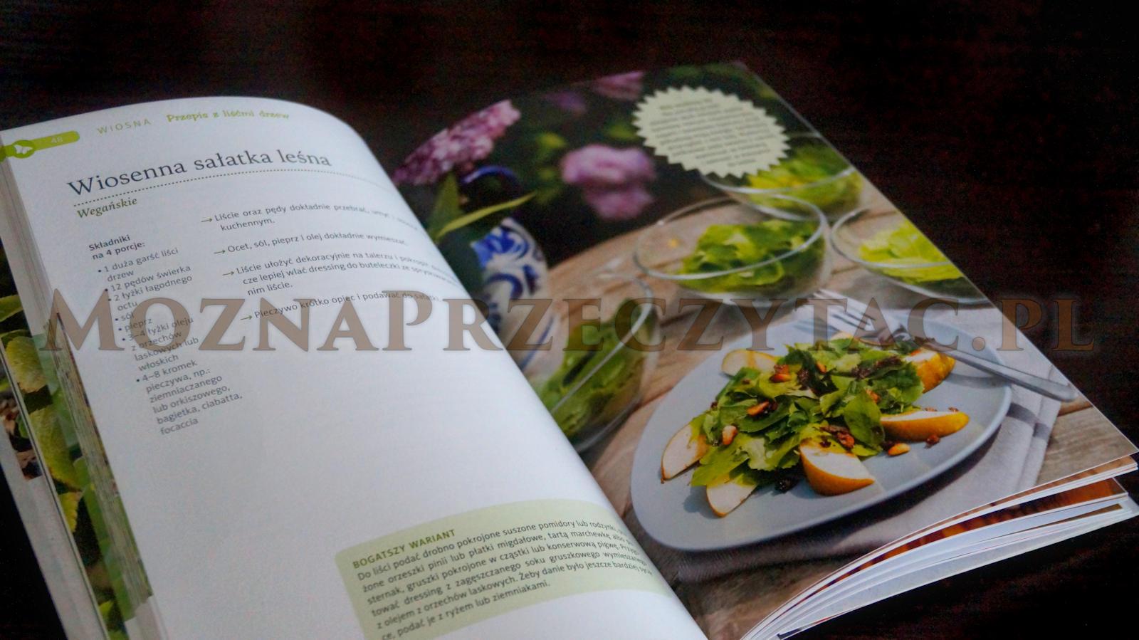 Superfood z ogrodów, łąk i lasów. Energia i zdrowie z natury - Karin Greiner
