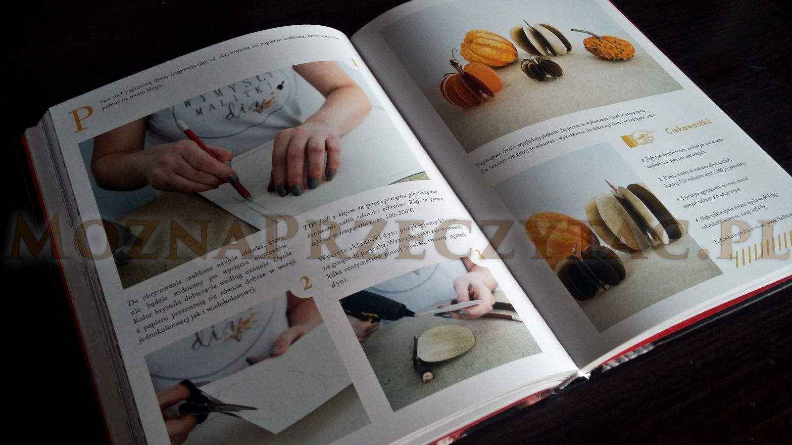 Wymysły Malitki DIY - Patrycja Malitka