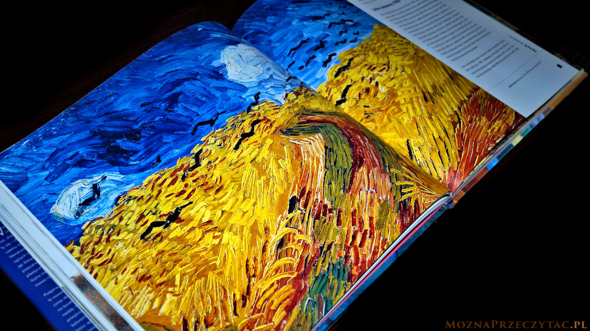 Sztuka nowoczesna. Od Moneta do Picassa - Rosalind Ormiston