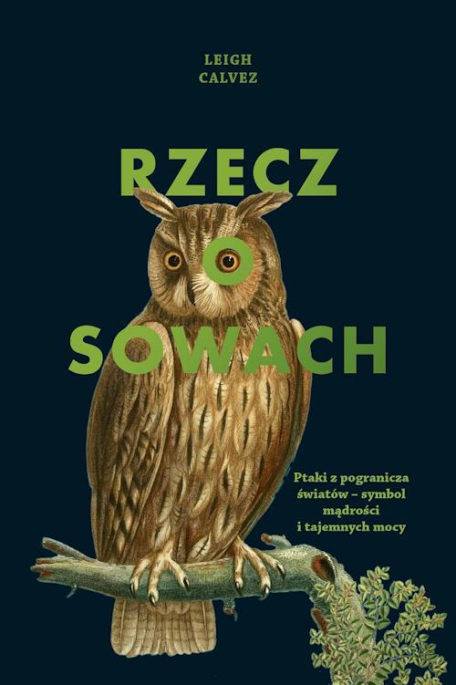 Recenzja książki Rzecz o sowach - Leigh Calvez