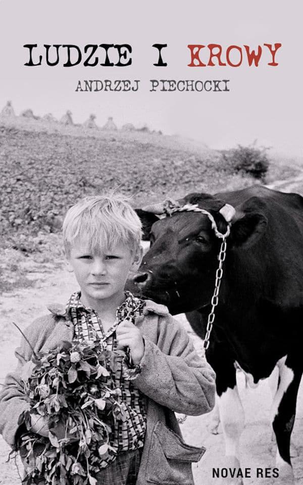 Recenzja książki Ludzie i krowy - Andrzej Piechocki